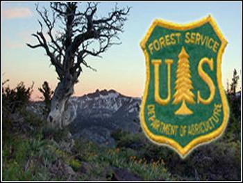 USDA Forest Service Performance Management